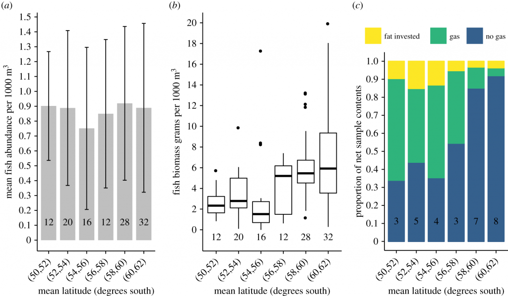 (a) Mean abundance of fish (individuals per 1000 m3) in RMT25 net samples by latitude, (b) Biomass of fish (grams per 1000 m3) in RMT25 net samples by latitude, (c) Relative proportions of fish by swimbladder contents in net samples at latitude. From Swimbladder morphology masks Southern Ocean mesopelagic fish biomass, Volume: 286, Issue: 1903, DOI: (10.1098/rspb.2019.0353)